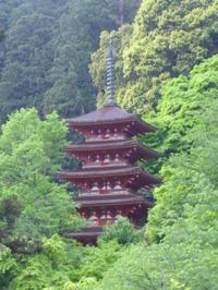 長谷寺・五重の塔