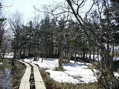 一湖から二湖への遊歩道