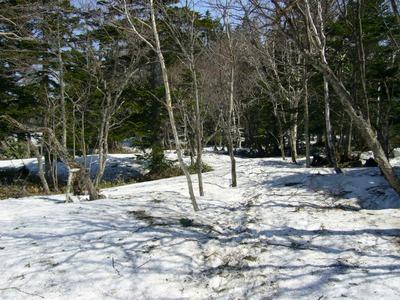 三湖周辺の散策路