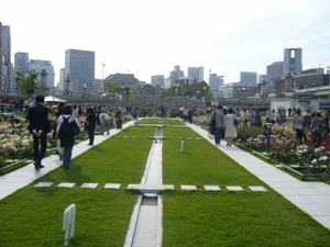 大阪・中之島 バラ園