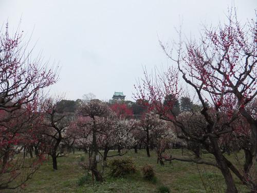 大阪城を背景に