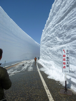 雪の大谷最高地点
