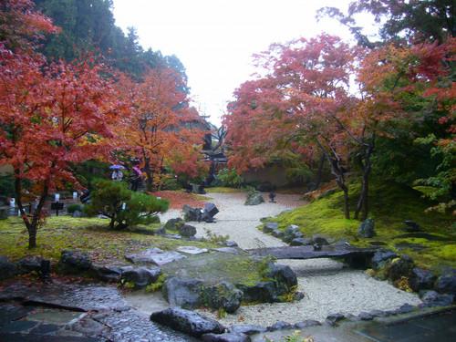 日中の庭園風景