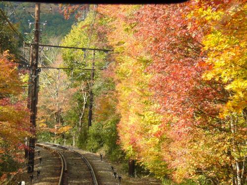 叡山電車の紅葉