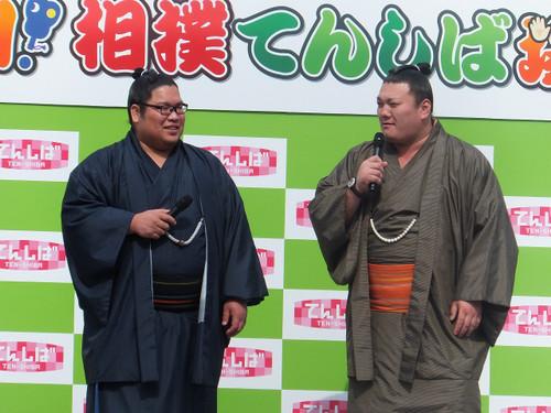 伊勢ノ海部屋のお相撲さん
